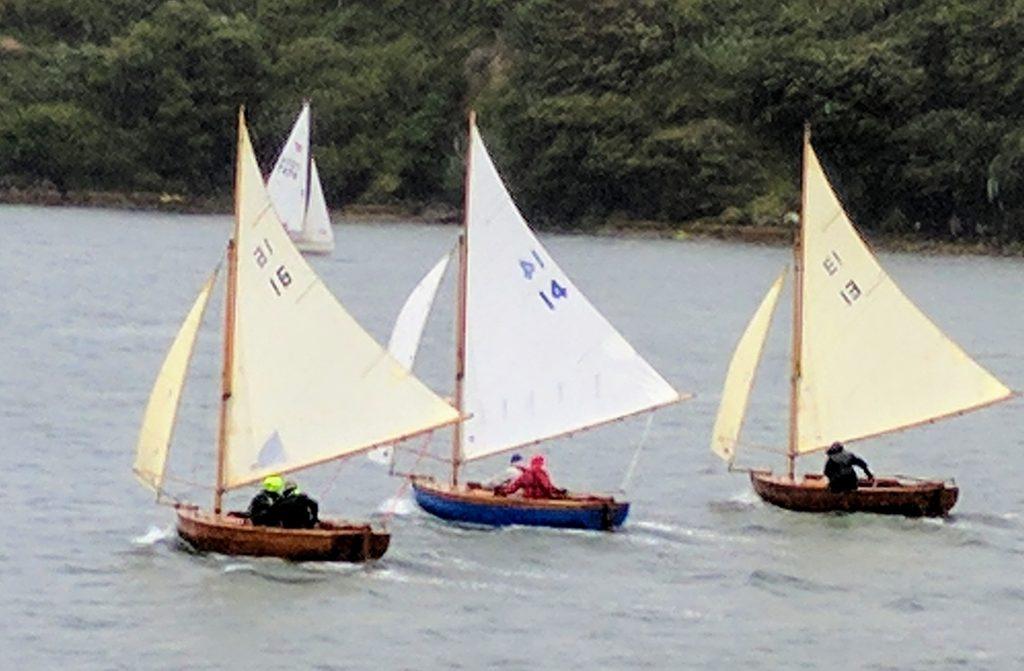 Ettes in Castlehaven - SCSC